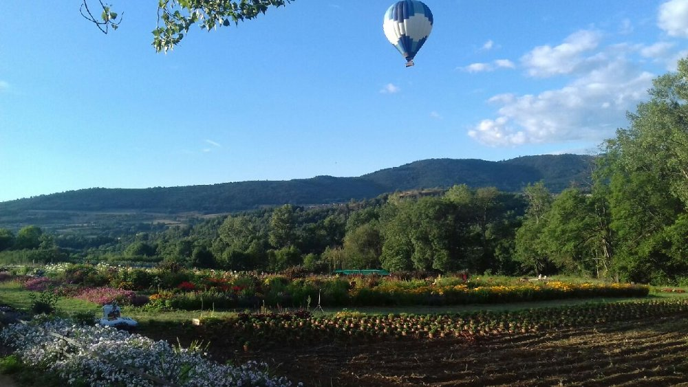Aire camping-car à Maclas (42520) - Photo 2